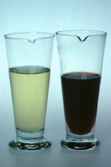plasmodium (malaria- blackwater fever)