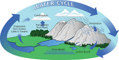 Another term for water cycle
