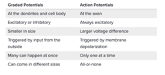 Graded potential vs. Action Potential