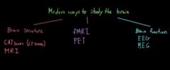 Lession studies and experimetal