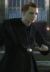 Professor of Muggle Studies