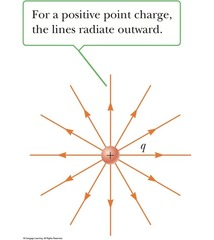 Where do electric field lines point in relation to a positive charge